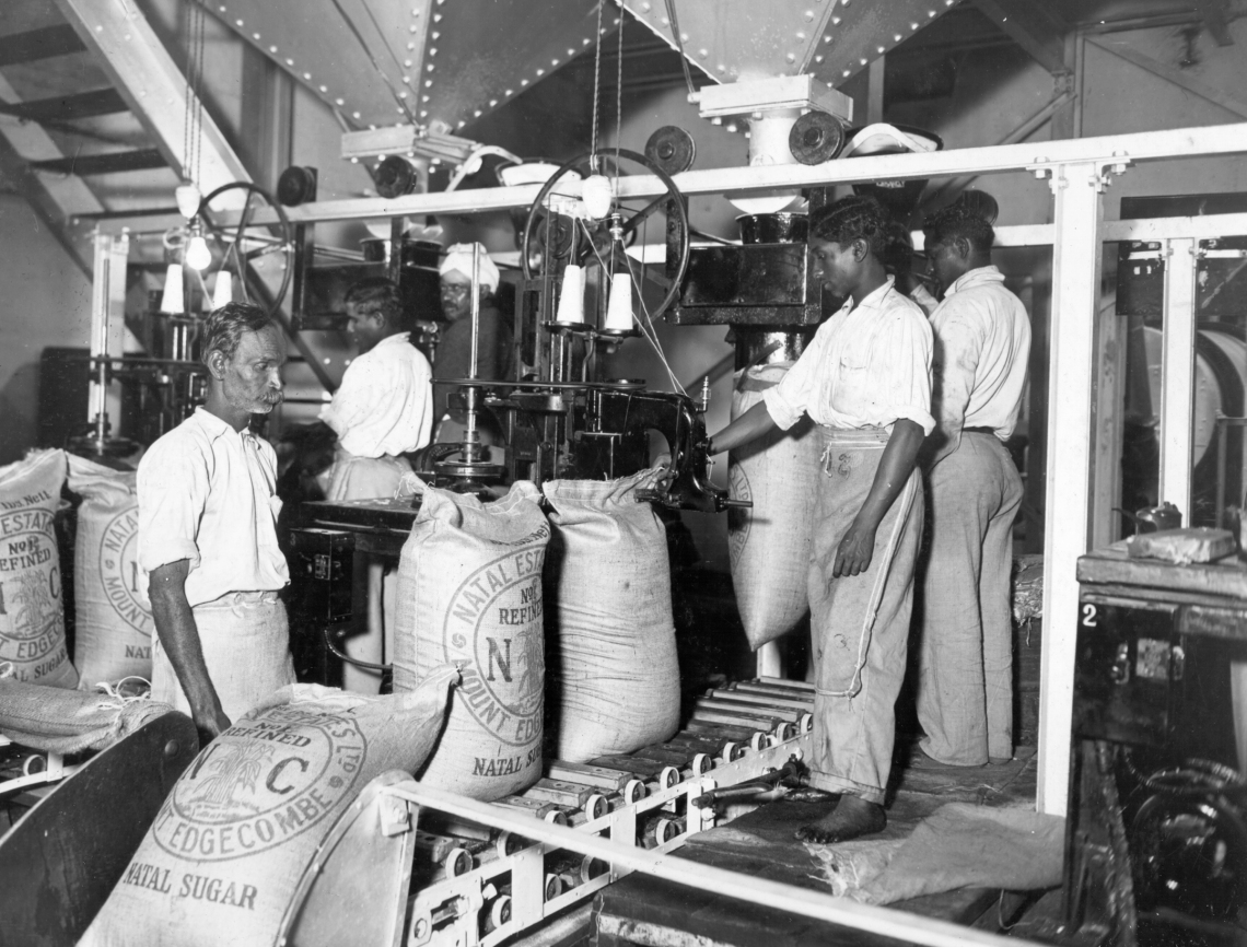 Indentured workers bagging sugar at Mt Edgecombe, early 1900s, picture credit The 1860 Heritage Centre